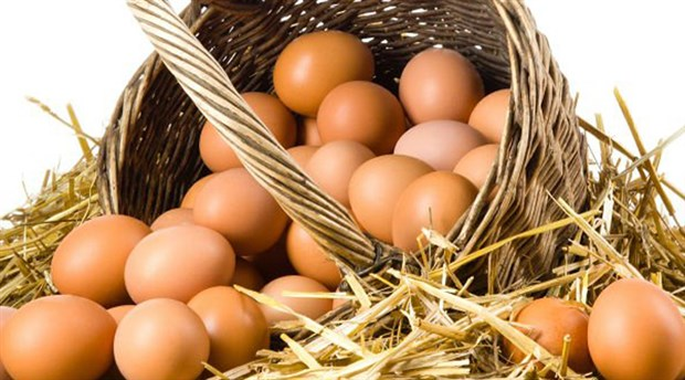 15-yumurta-icin-15-bin-lira-ceza-geldi-350799-5